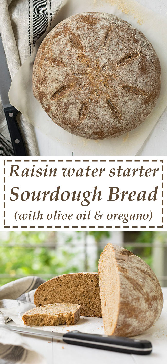 Raisin water starter sourdough bread 7