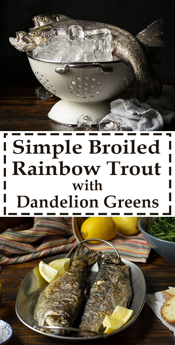 Simple broiled rainbow trout with dandelion greens 6