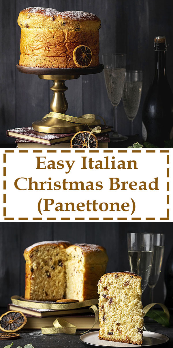Easy Italian Christmas Bread (Panettone) 6
